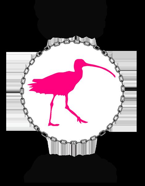 Umeå Osport